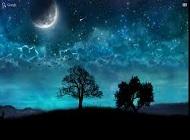 Felicitari de noapte buna Amalia