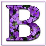 Greeting Cards With Name Letter B