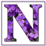 Greeting Cards With Name Letter N