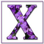 Greeting Cards With Name Letter X