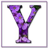 Greeting Cards With Name Letter Y
