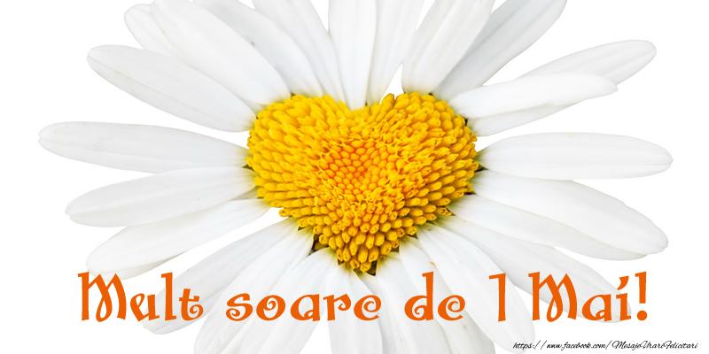 Felicitari de 1 Mai - Mult soare de 1 Mai!