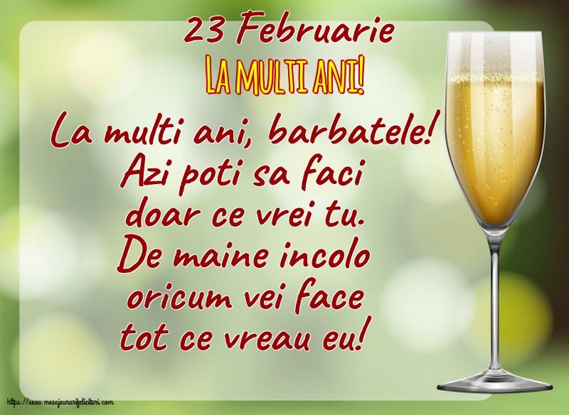Felicitari de 23 Februarie - 23 Februarie - La multi ani!