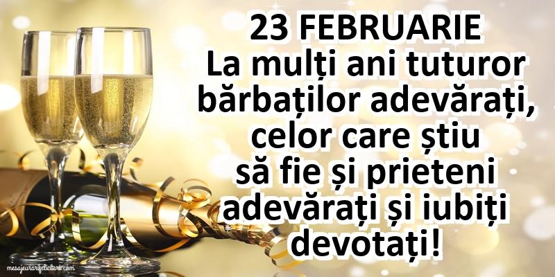 23 Februarie
