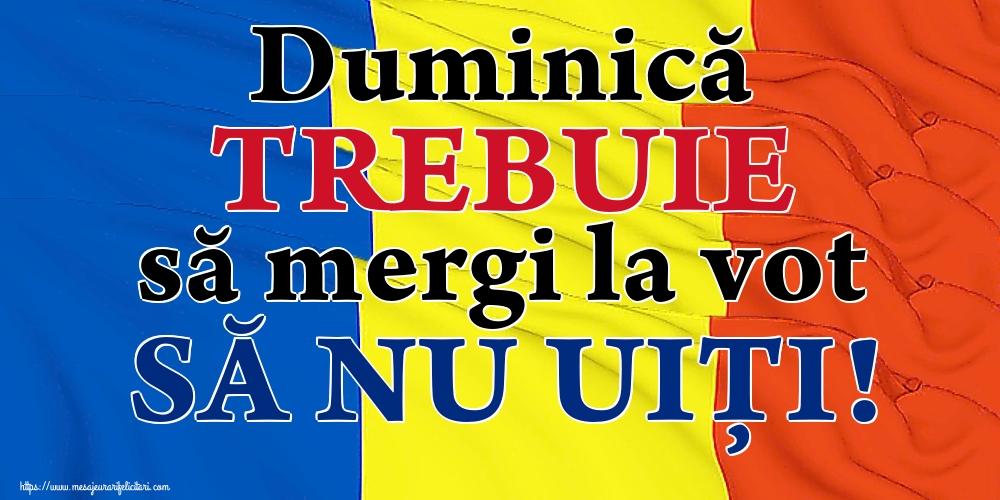 Imagini Alegeri - Duminică TREBUIE să mergi la vot SĂ NU UIȚI!