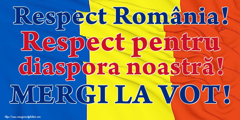 Imagini Alegeri - Respect România! Respect pentru diaspora noastră! MERGI LA VOT!