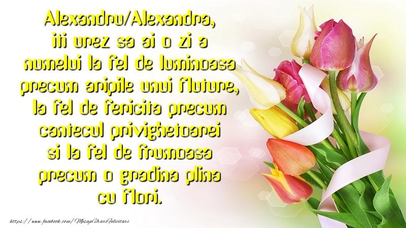 Felicitari de Sfantul Alexandru - La multi ani