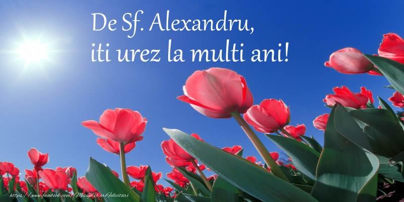 Felicitari de Sfantul Alexandru - De Sf. Alexandru, iti urez La multi ani! - mesajeurarifelicitari.com