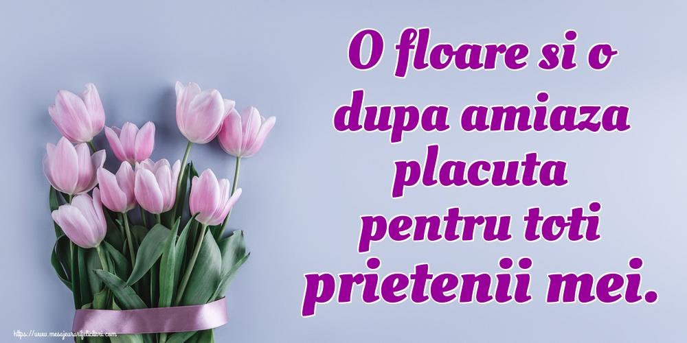 Amiaza O floare si o dupa amiaza placuta pentru toti prietenii mei.