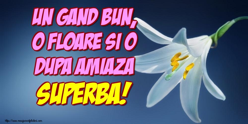 Felicitari de Amiaza - Un gand bun, o floare si o dupa amiaza superba! - mesajeurarifelicitari.com