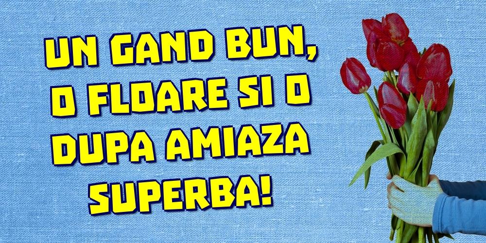 Felicitari de Amiaza - Un gand bun, o floare si o dupa amiaza superba!