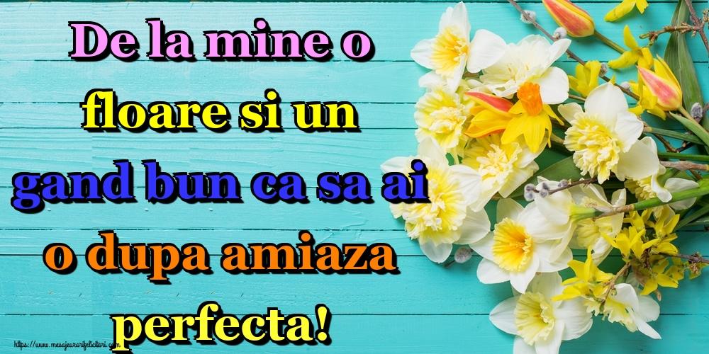 Felicitari de Amiaza - De la mine o floare si un gand bun ca sa ai o dupa amiaza perfecta!