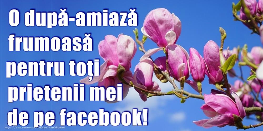 Felicitari de Amiaza - O după-amiază plăcută!