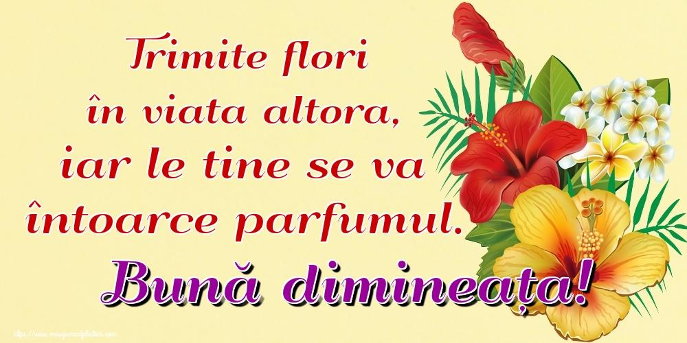 Felicitari de buna dimineata - Trimite flori în viata altora, iar le tine se va întoarce parfumul. Bună dimineața!