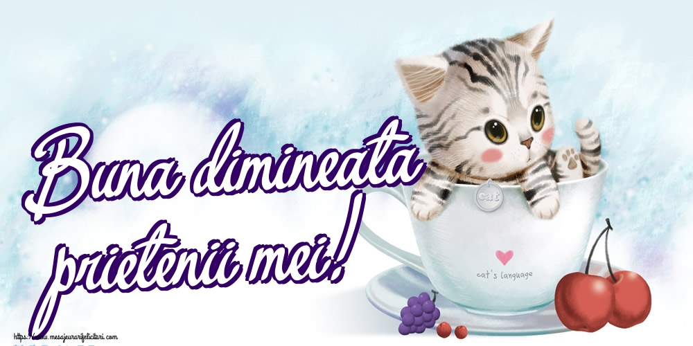 Felicitari de buna dimineata - Buna dimineata prietenii mei!