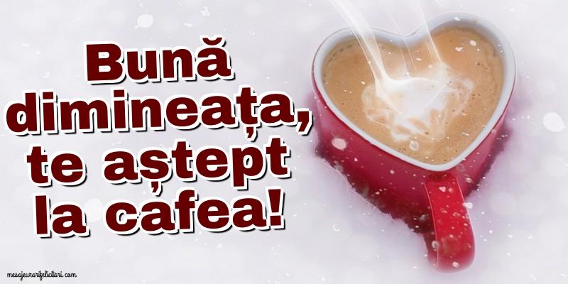 Felicitari de buna dimineata - Bună dimineața