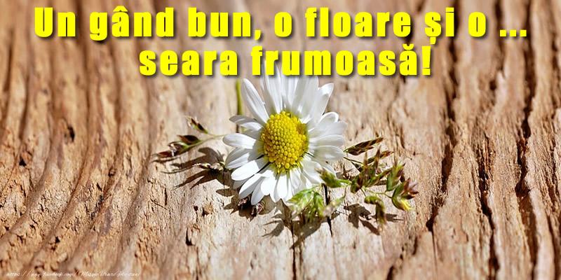 Felicitari de buna seara - Un gând bun, o floare și o ...  seara frumoasă! - mesajeurarifelicitari.com