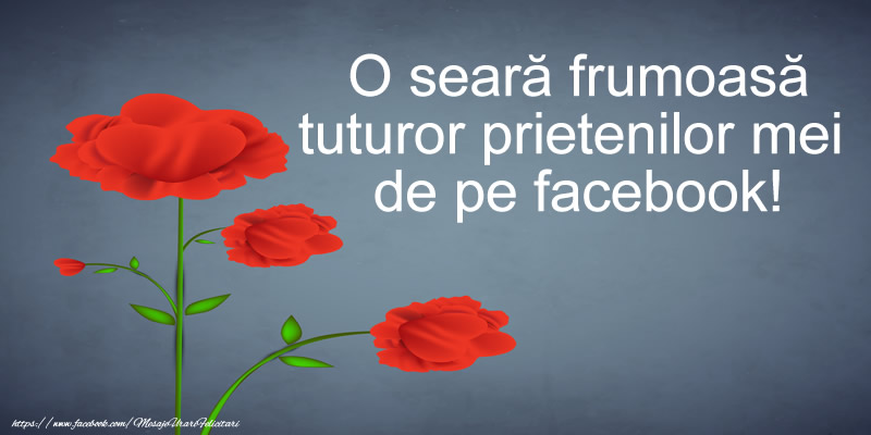 Buna seara O seara frumoasa tuturor prietenilor mei de pe facebook!