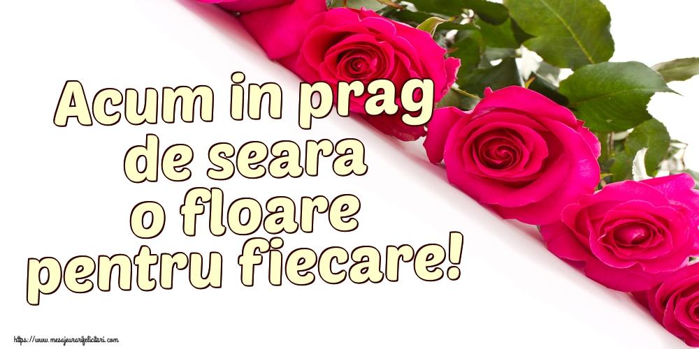 Felicitari de buna seara - Acum in prag de seara o floare pentru fiecare!