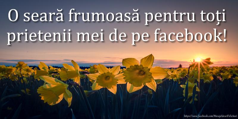 Felicitari de buna seara - O seară frumoasă pentru toți prietenii mei de pe facebook! - mesajeurarifelicitari.com