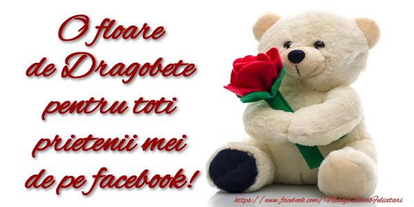Dragobete O floare de Dragobete pentru toti prietenii mei de pe facebook!