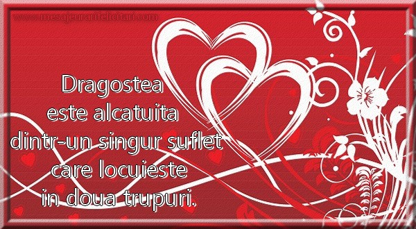 Dragostea este alcatuita dintr-un singur suflet ...