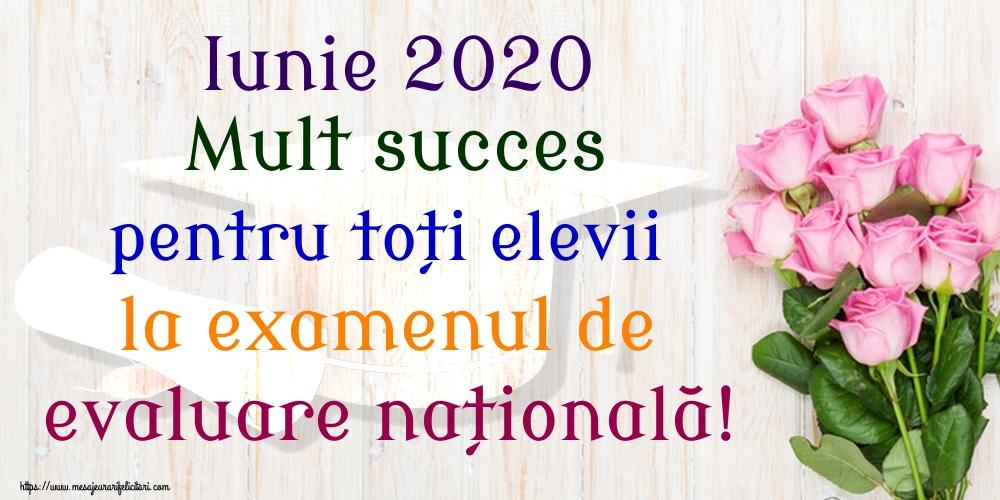 Felicitari de Evaluarea Națională - Iunie 2020 Mult succes pentru toți elevii la examenul de evaluare națională!