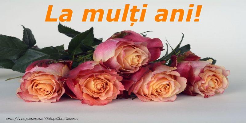 Felicitari cu flori cu trandafiri - La mulți ani!