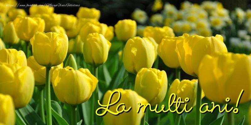 Felicitari cu flori 2017