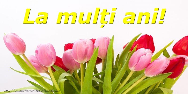 Felicitari cu flori - La mulți ani!
