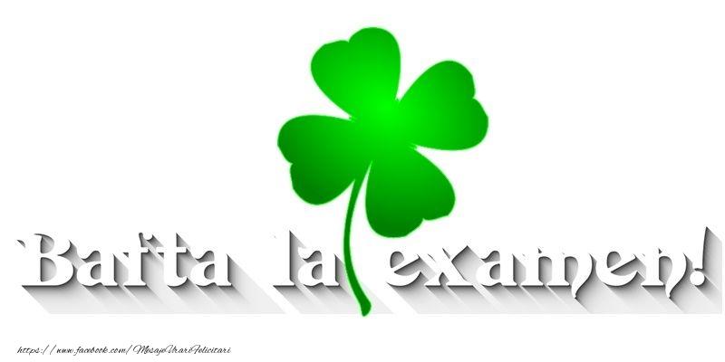 Felicitari de Incurajare - Bafta la examen!