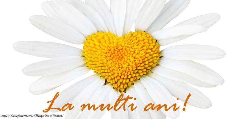 Felicitari de la multi ani cu flori - La multi ani!