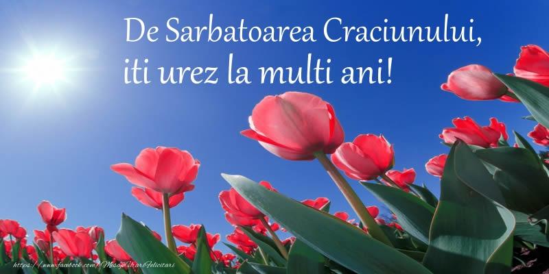 Felicitari de Nasterea Domnului - De Sarbatoarea Craciunului, iti urez La multi ani!