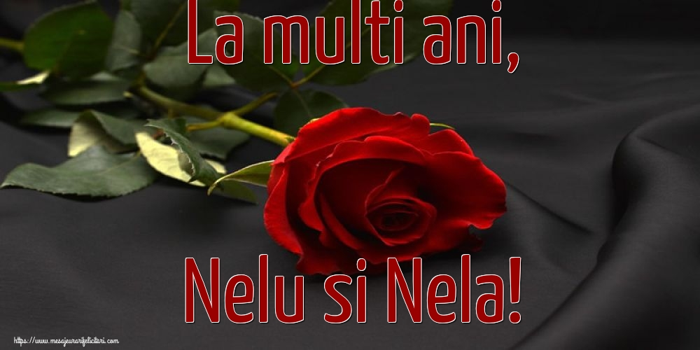 Felicitari de Nasterea Sfantului Ioan cu flori - La multi ani, Nelu si Nela!