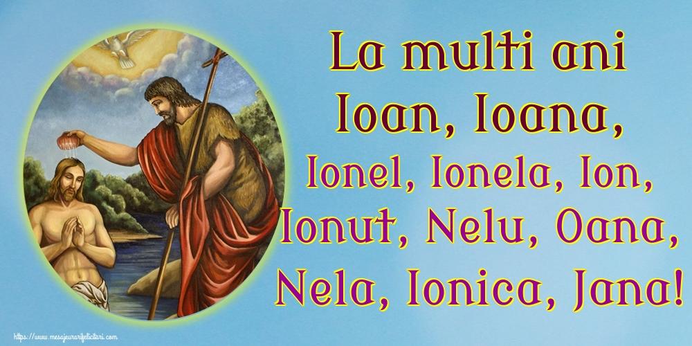 Nasterea Sfantului Ioan La multi ani Ioan, Ioana, Ionel, Ionela, Ion, Ionut, Nelu, Oana, Nela, Ionica, Jana!