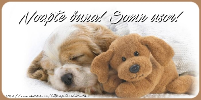 Felicitari de noapte buna - Noapte buna! Somn usor!