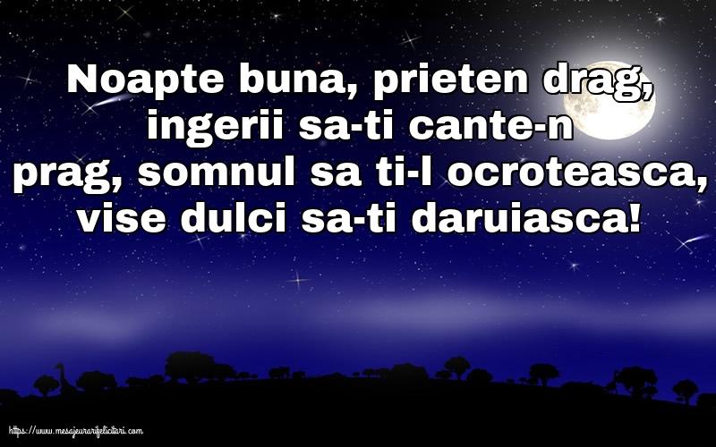 Felicitari de noapte buna - Noapte buna, prieten drag!
