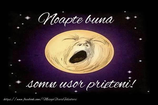 Felicitari de noapte buna - Noapte buna, somn usor prieteni!