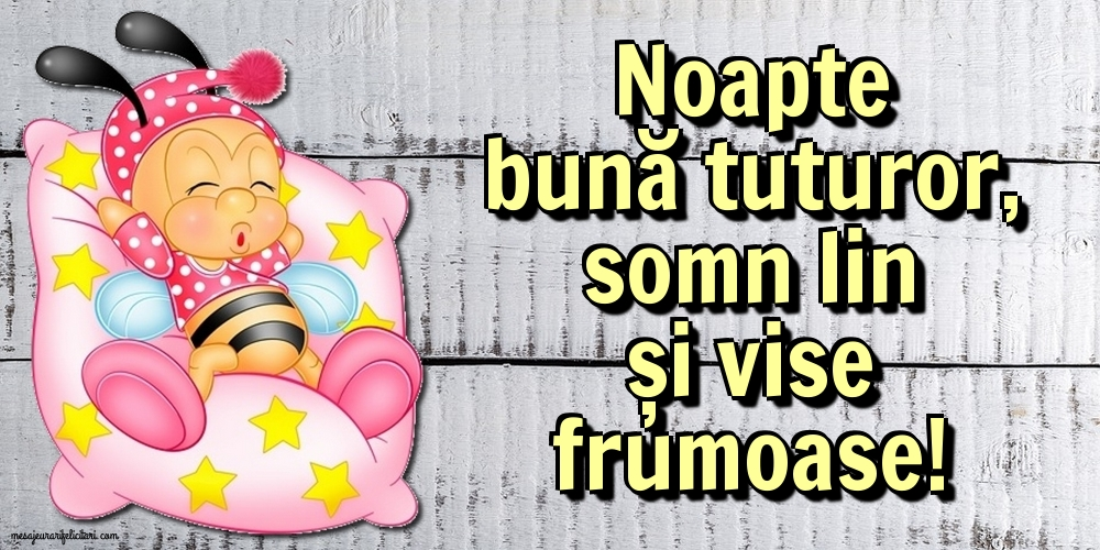 Felicitari de noapte buna - Noapte bună tuturor