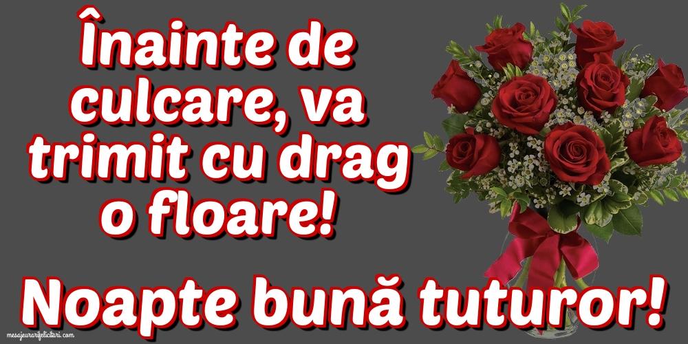 Felicitari de noapte buna - Noapte bună tuturor!
