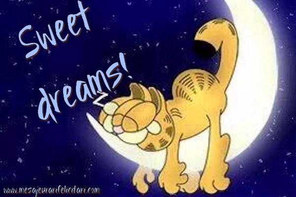 Felicitari de noapte buna in Engleza - Sweet dreams!