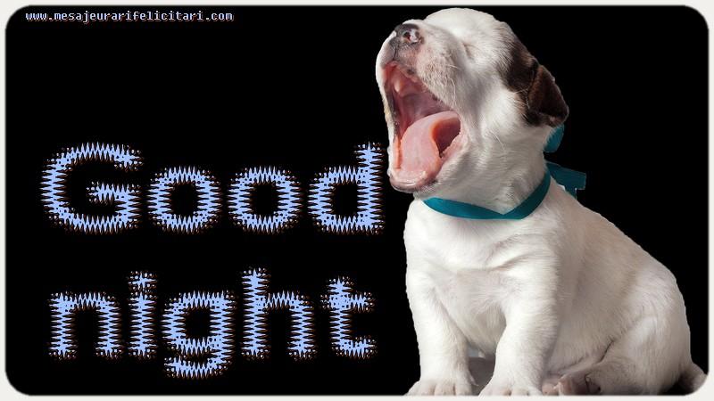 Felicitari de noapte buna in Engleza - Good night
