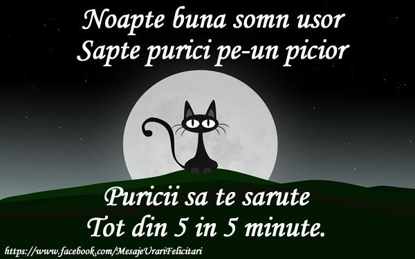 Felicitari de noapte buna - Noapte buna somn usor, sapte pureci pe-un picior, Puricii sa te sarute, tot din 5 in 5 minute
