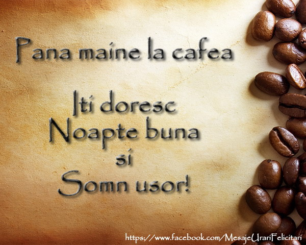 Felicitari de noapte buna - Pana maine la cafea ... Somn usor!