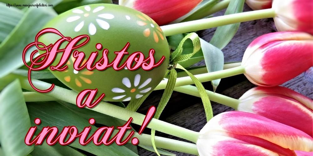 Felicitari de Paste - Hristos a inviat! - mesajeurarifelicitari.com