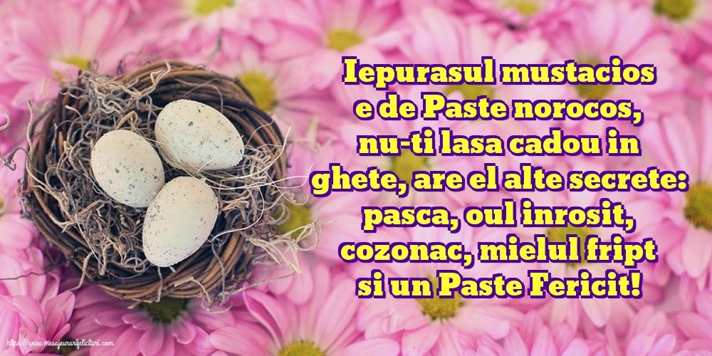 Felicitari de Paste - Iepurasul mustacios e de Paste norocos