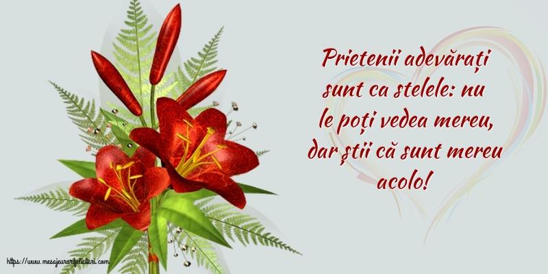 Felicitari de prietenie - Prietenii adevărați sunt ca stelele