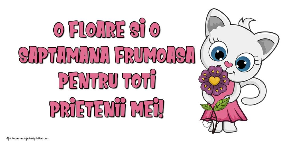 Felicitari de prietenie - O floare si o saptamana frumoasa pentru toti prietenii mei!