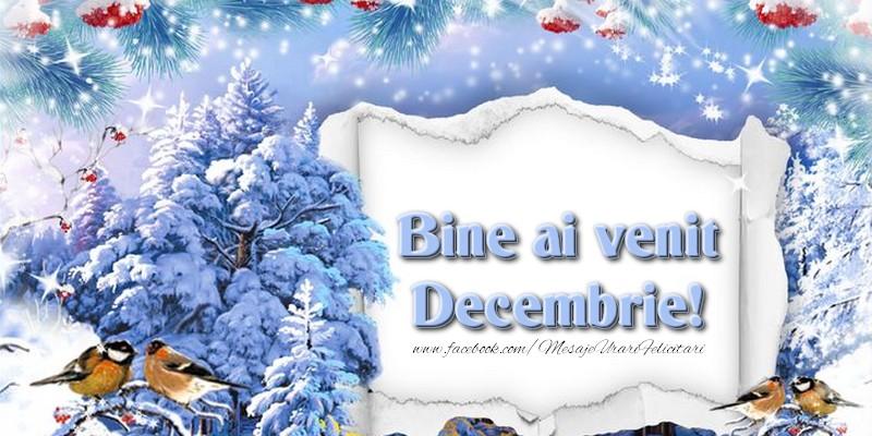 Felicitari de prietenie - Bine ai venit, Decembrie!