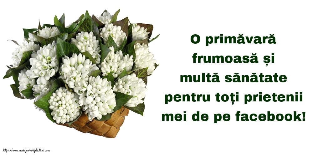 Felicitari de Primavara cu mesaje - O primăvară frumoasă!